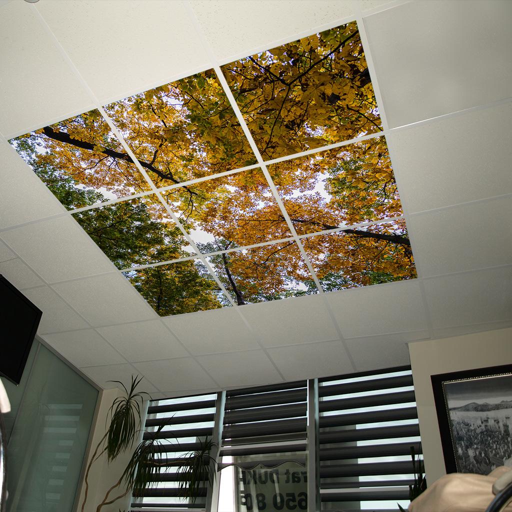 Ceiling tiles atlanta